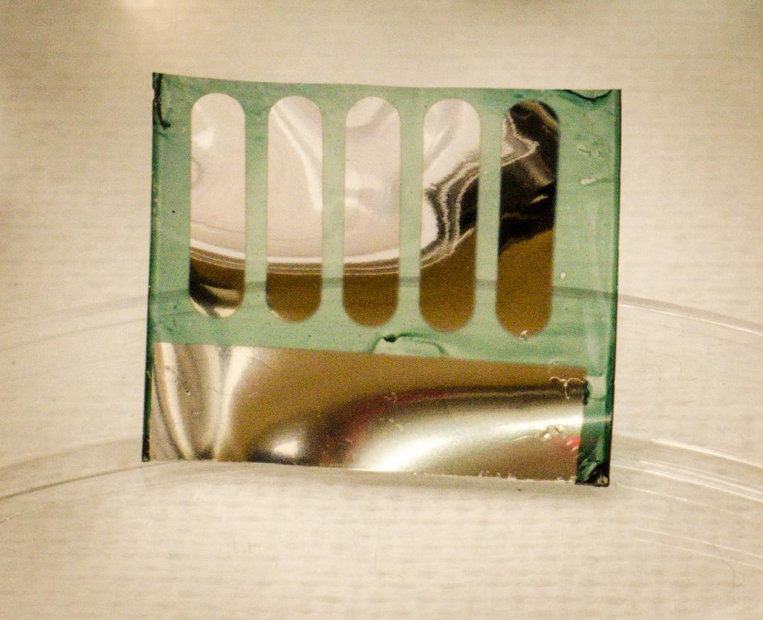 The new solar cells can be easily recycled in water at room temperature