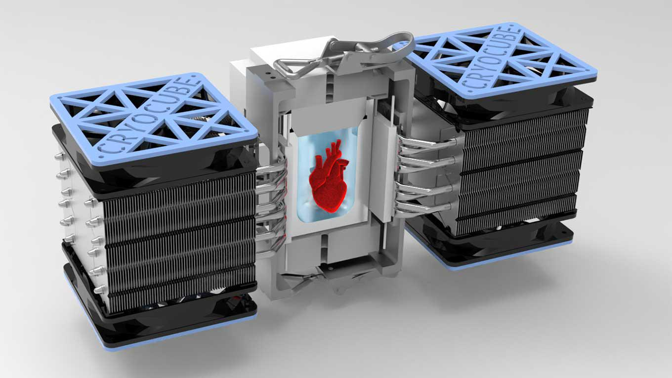 Illustration of isochoric chamber that supercools heart tissue to subfreezing temperatures without ice formation