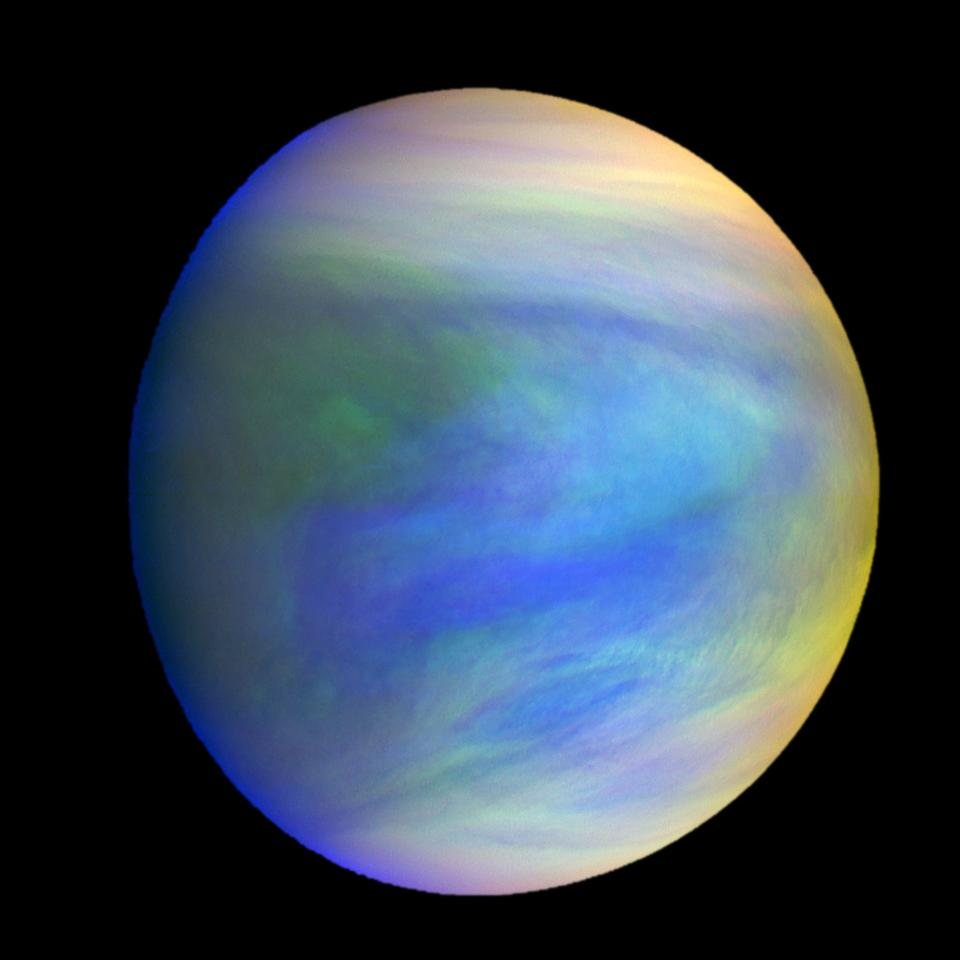 A composite image of the planet Venus showing the mysterious clouds that could be home to microbial life, as seen by the Japanese probe Akatsuki