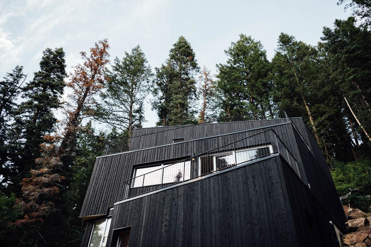 The Treehaus has been placed on the market with an asking price of US$1.1 million