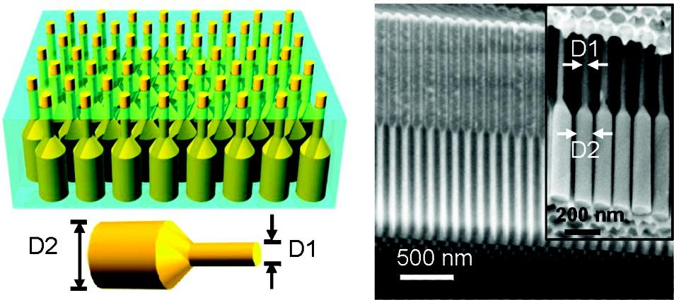 A schematic of a germanium nanopillar array embedded in an alumina foil membrane (left), and SEM images of a blank alumina membrane with dual-diameter pores (right) (Images: Ali Javey)