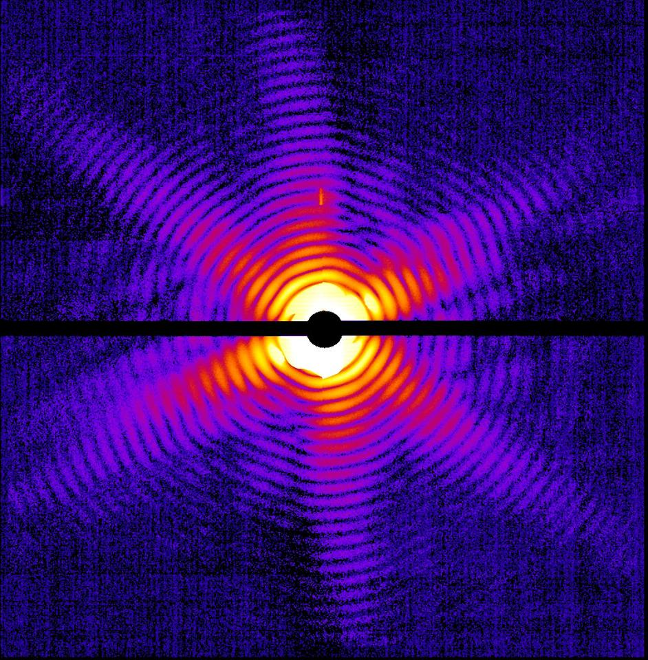 X-ray diffraction pattern of a single Mimivirus particle imaged at the LCLS (Image courtesy Tomas Ekeberg, Uppsala University.)