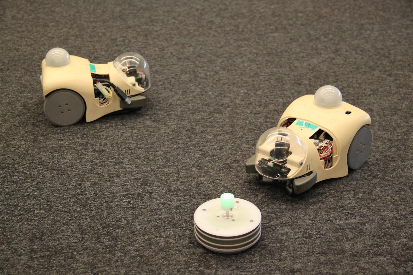 The study used robots known as Cyber Rodents to study mating behaviour over more than 1,000 generations (Photo: OIST)