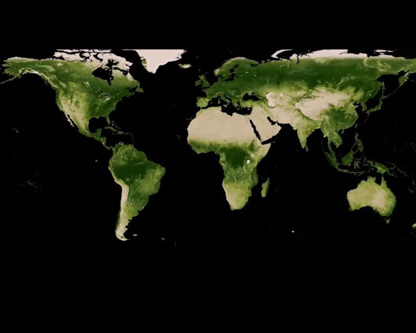 Increased CO2 levels are greening the Earth