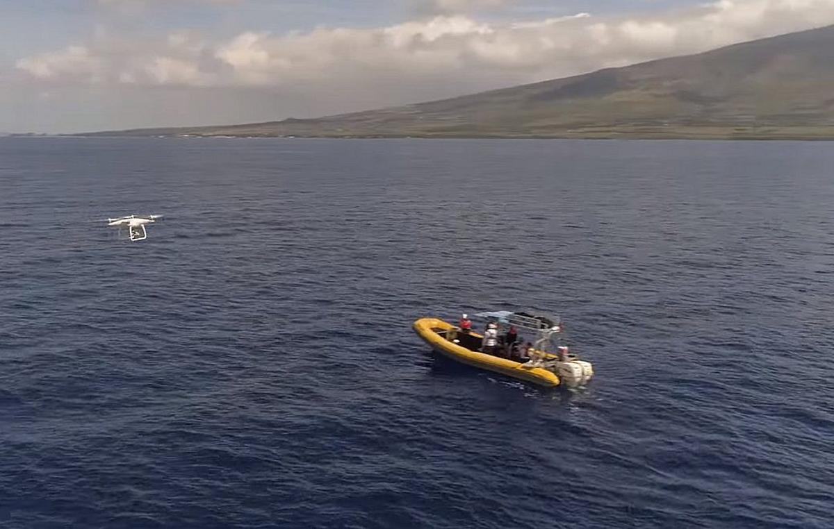 DJI has donated some of its Phantom 4 Pro drones to a project that provides aerial support to specialists freeing entangled whales from ocean debris