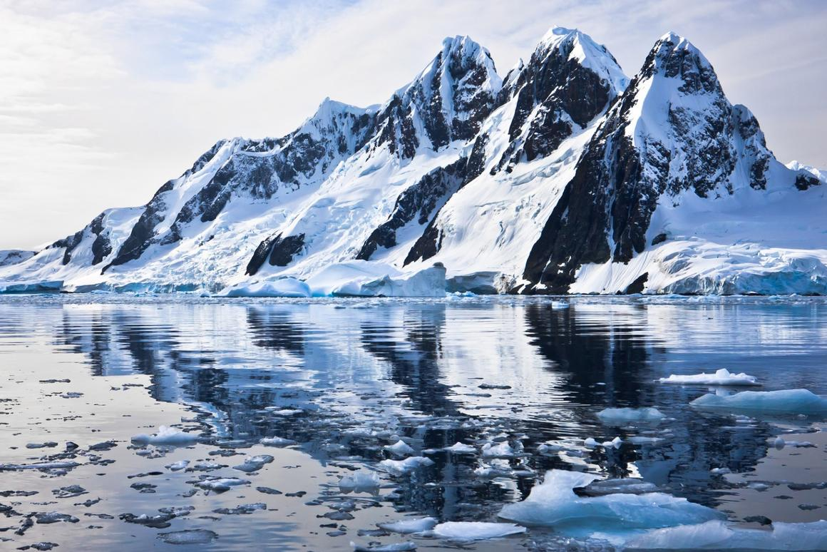 Bacteria have been discovered living in polar ice and snow, which was previously thought to be too harsh for them to thrive