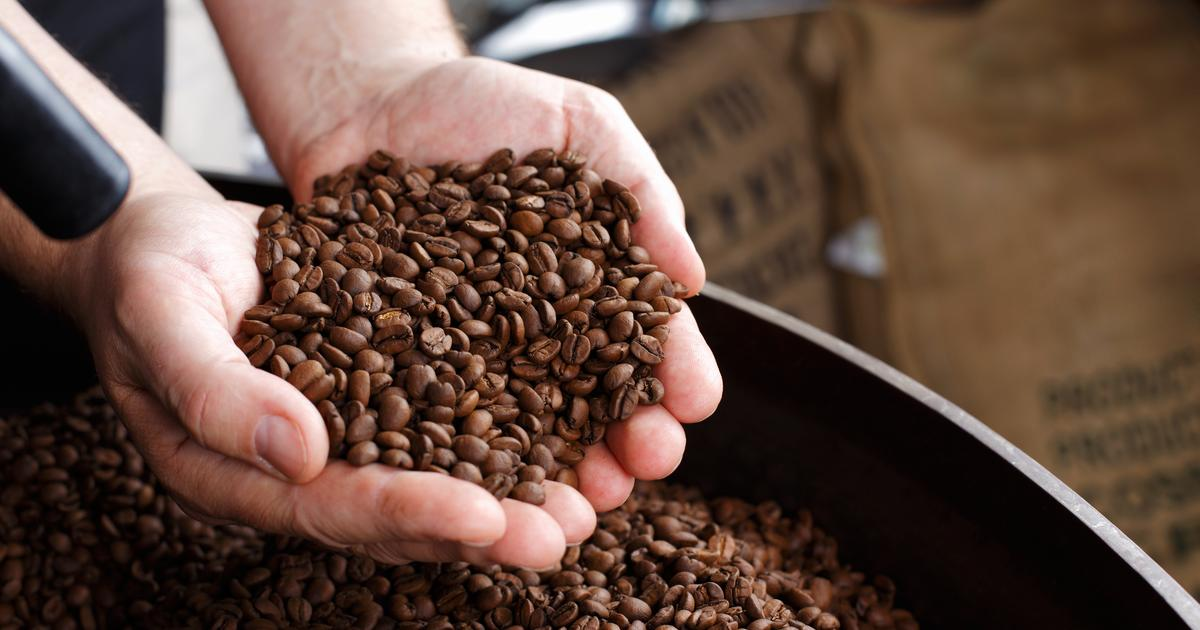 A better way of detecting bogus coffee beans