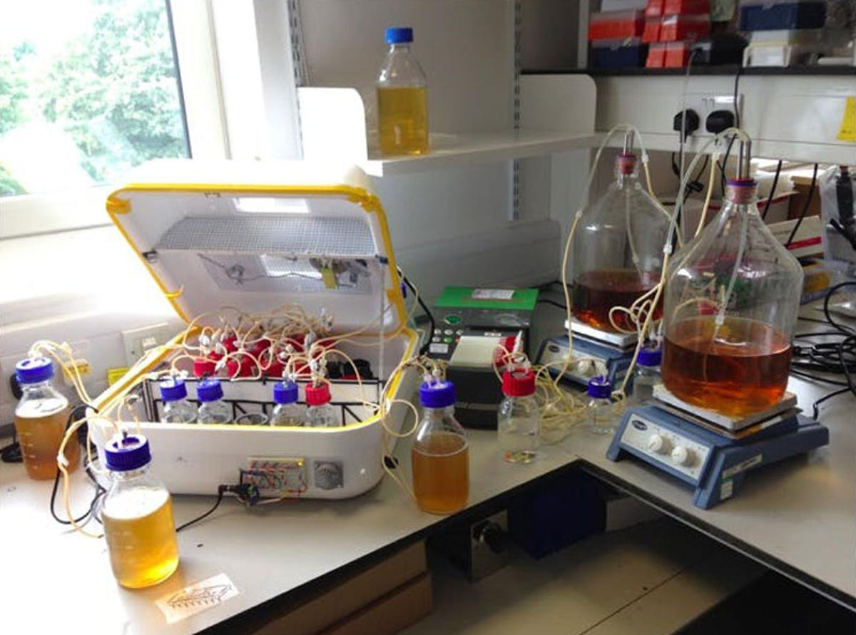 An early prototype of the EVOPROG, an evolution machine that can guide the evolution of bacteria to make new molecules by making changes to their environment