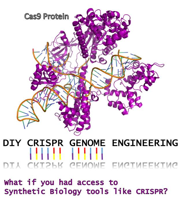 Do-it-yourself CRISPR gene editing: coming soon to a home near you