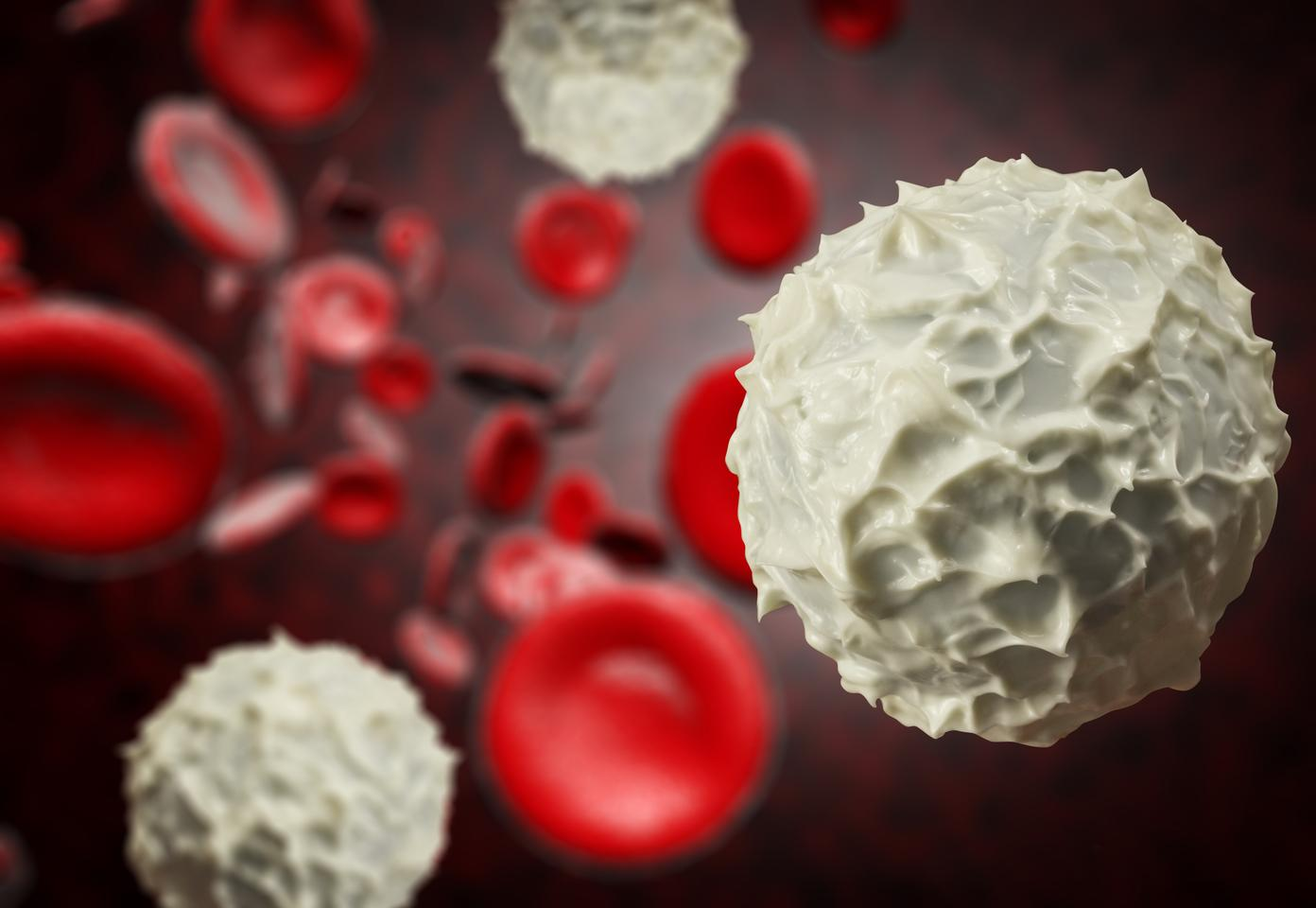 Multiple myeloma attacks the white blood cells, but a new treatment may help