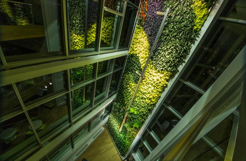 Green Over Grey says it has created the world's largest interior living wall