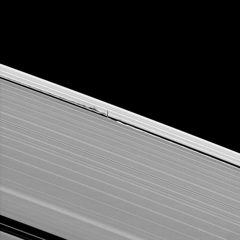 Saturn's moon Daphnis makes waves in the giant planet's rings as it orbits