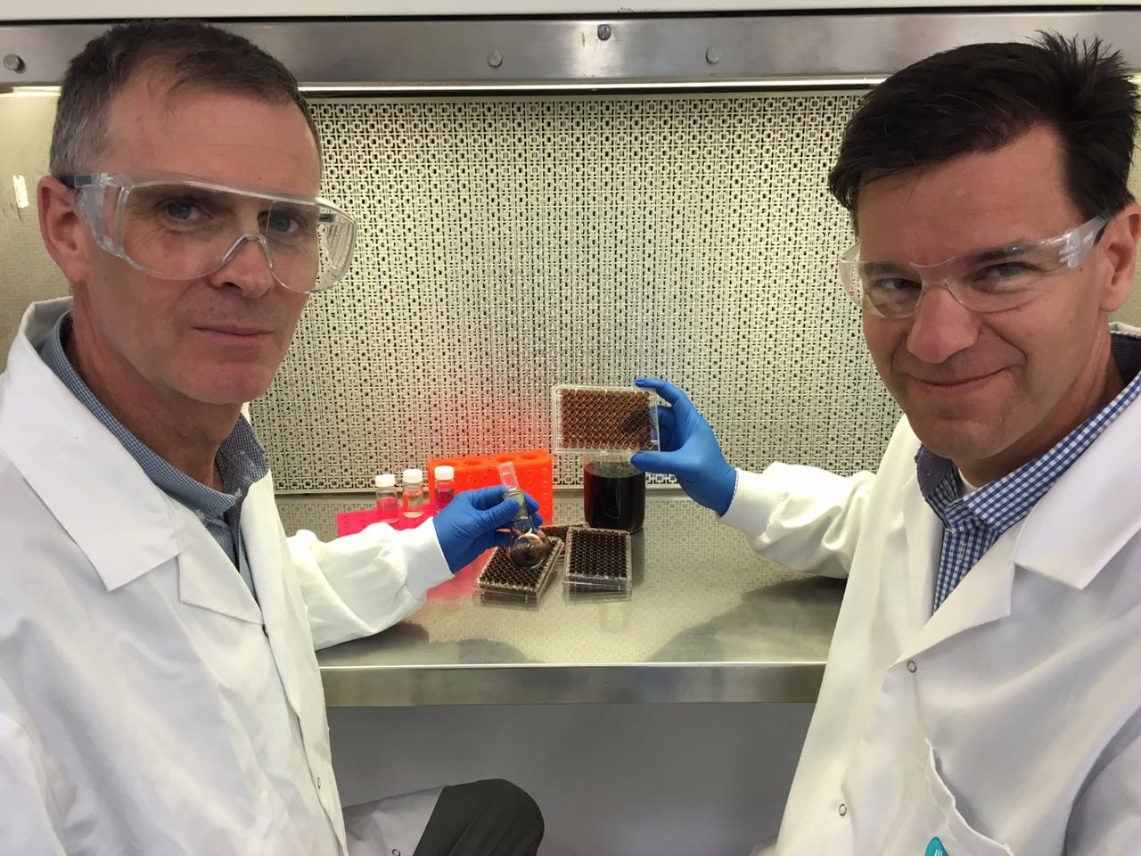 Dr. Richard Evans (left) and Dr. Helmut Thissen have developed a coating for medical devices, inspired by the beginnings of life