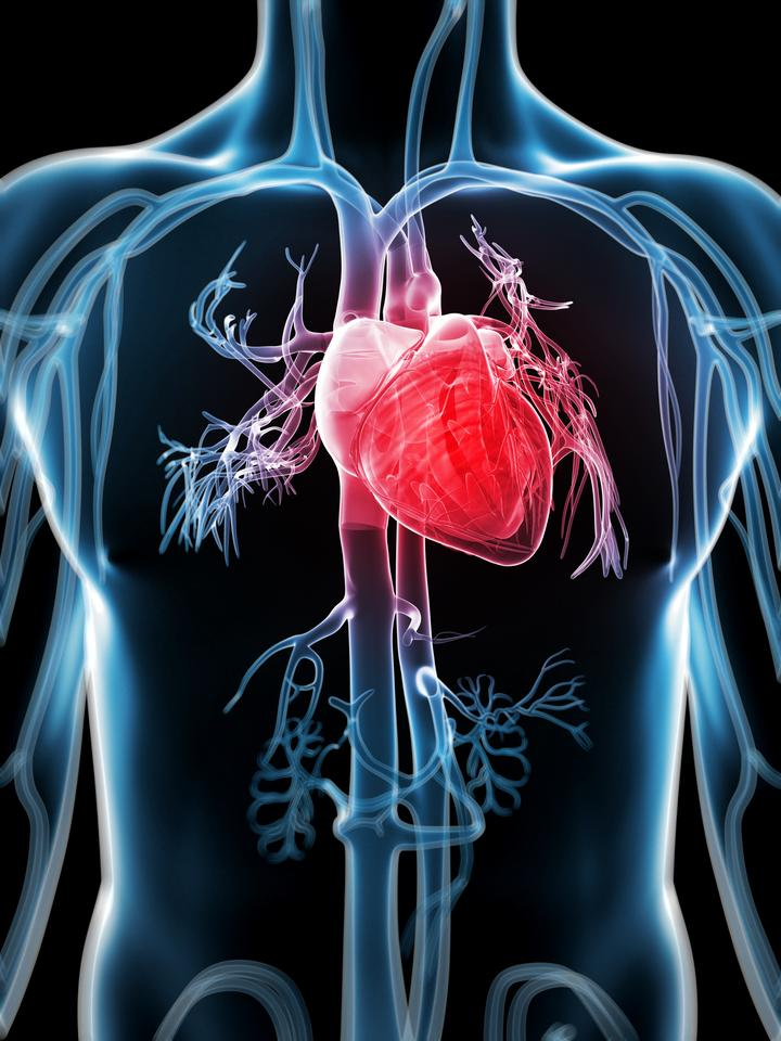 New technology allows the heart to become its own pacemaker (Image: Shutterstock)