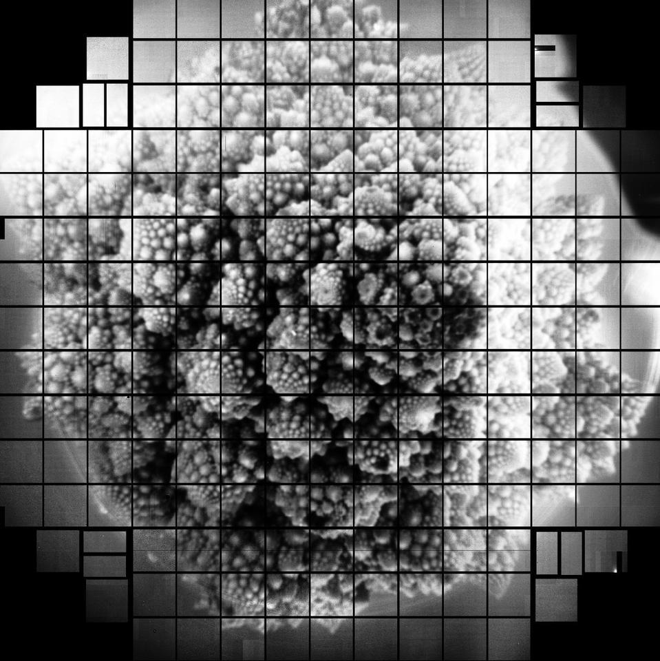 بزرگترین سنسور دوربین جهان اولین عکس های 3200 مگاپیکسلی می گیرد