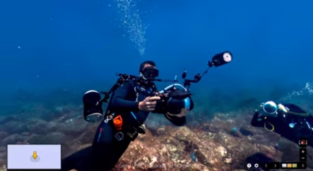 Google partnered with XL Caitlin Seaview Survey and Underwater Earth to compile the images over the last four years