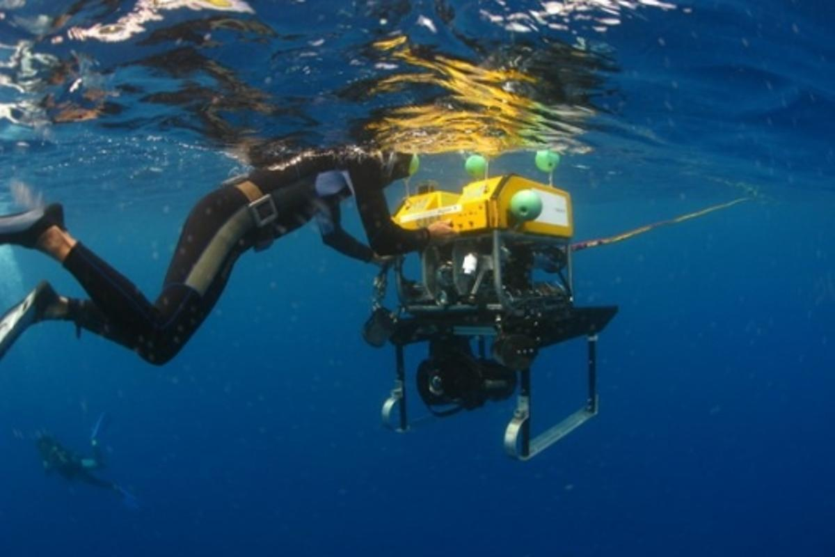 The OceanCam is an affordable solution to record high definition videos of the ocean depths.