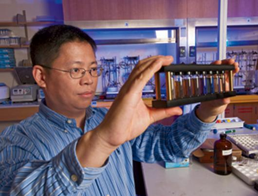 Younan Xia with vials of the gold nanocages developed in his lab
