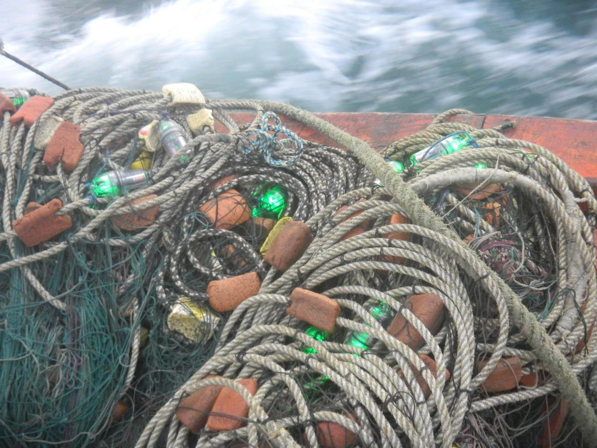 One of the LED-packing gill nets