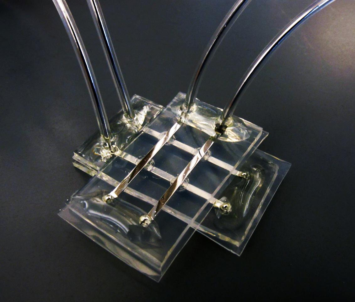 Researchers have developed a memory device that is soft and squishy, and not affected by wet environments (Photo: Michael Dickey, North Carolina State University)