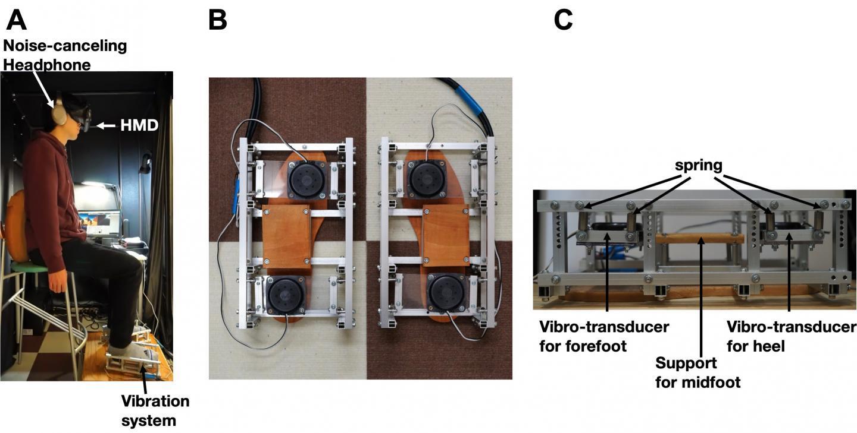 A diagram of the experimental setup