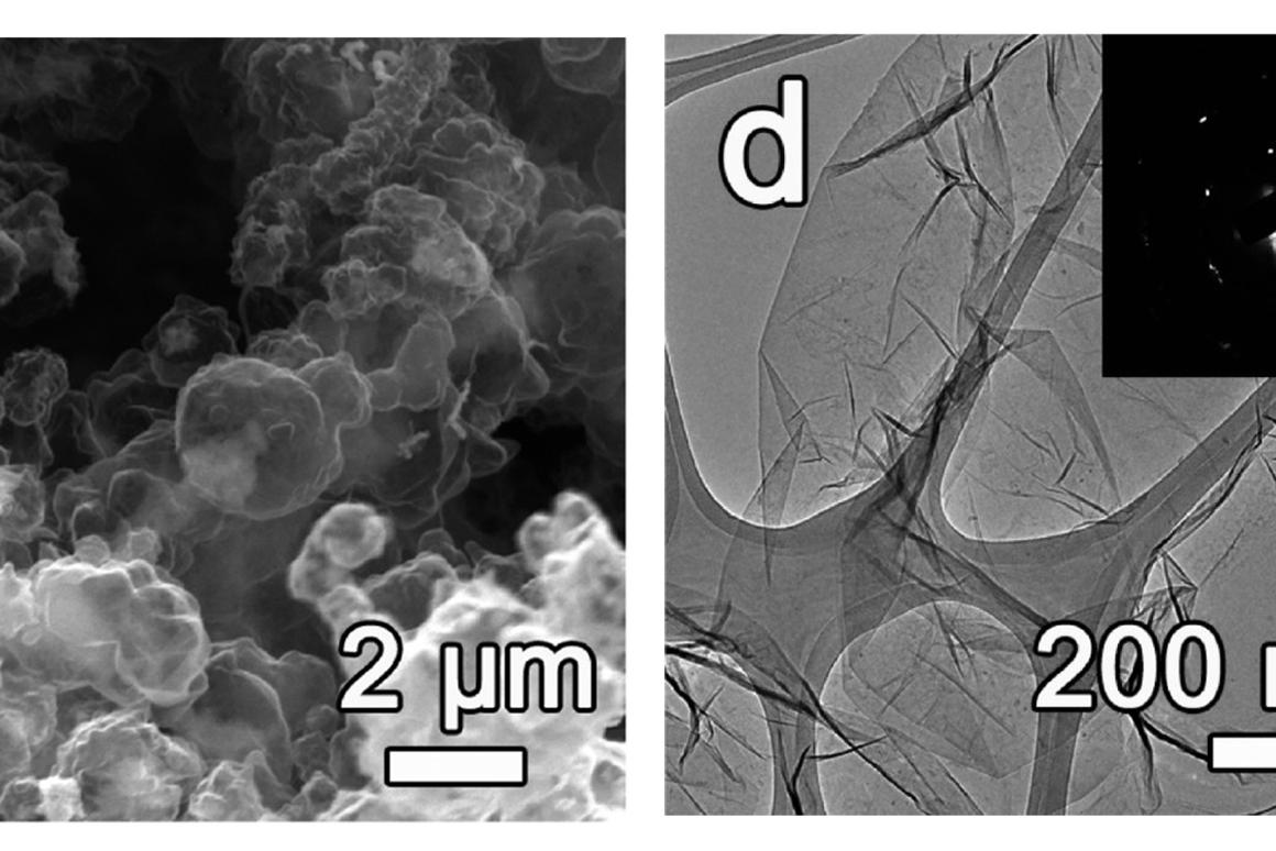 3D-printed graphene foam, as seen through ascanning electron microscope(left) and transmission electron microscope (right)