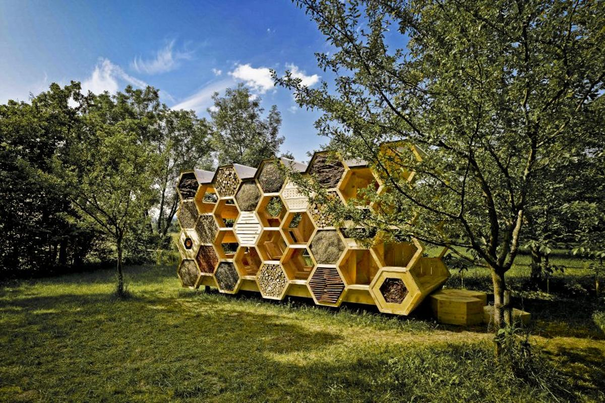 French Architecture Studio AtelierD has designed a pavilion for both bees and humans (Photo: Stephane Spach)