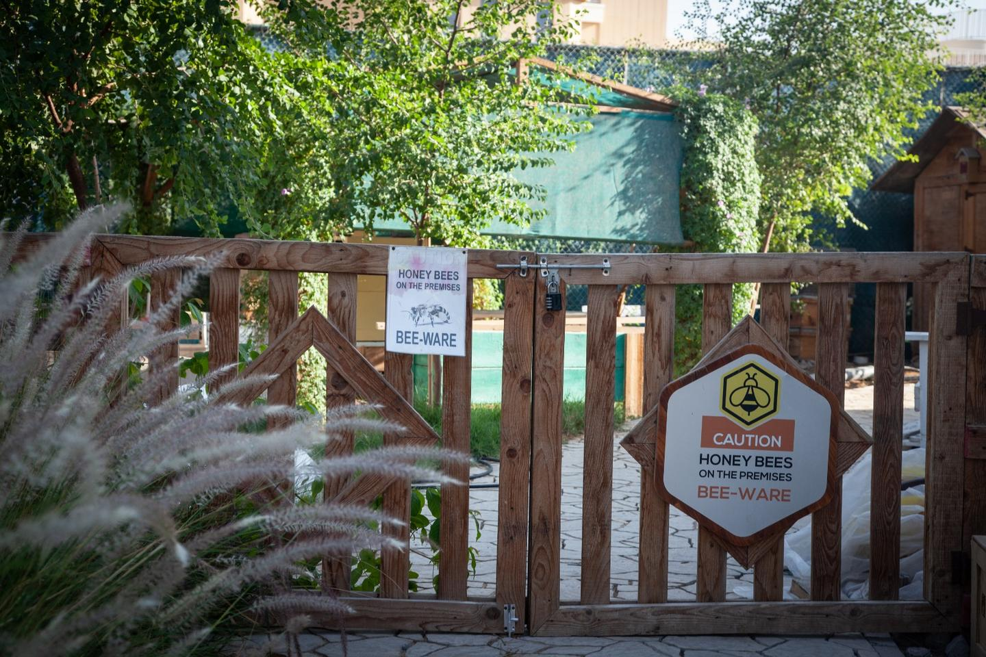 Bee hives at the Dubai Sustainable City