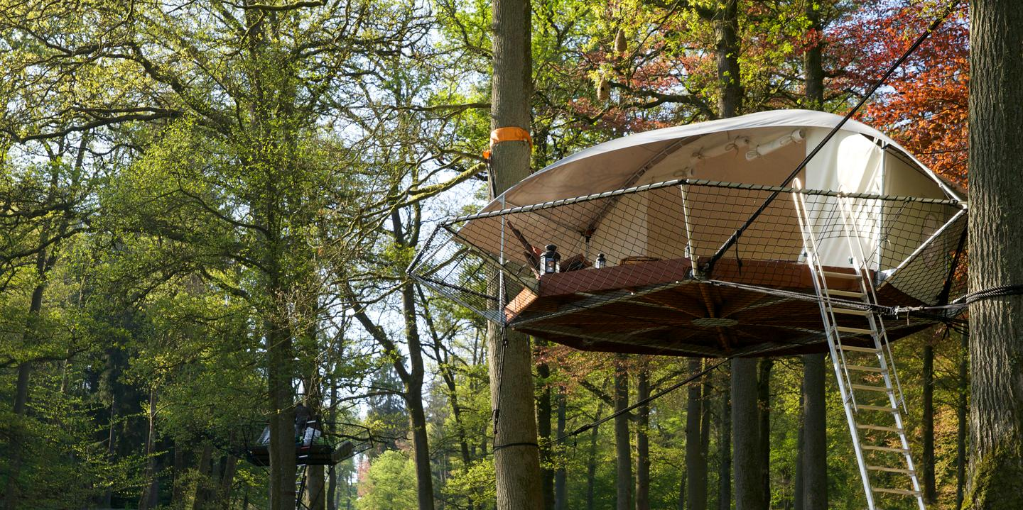 Dom'Up takes camping in the trees to new heights