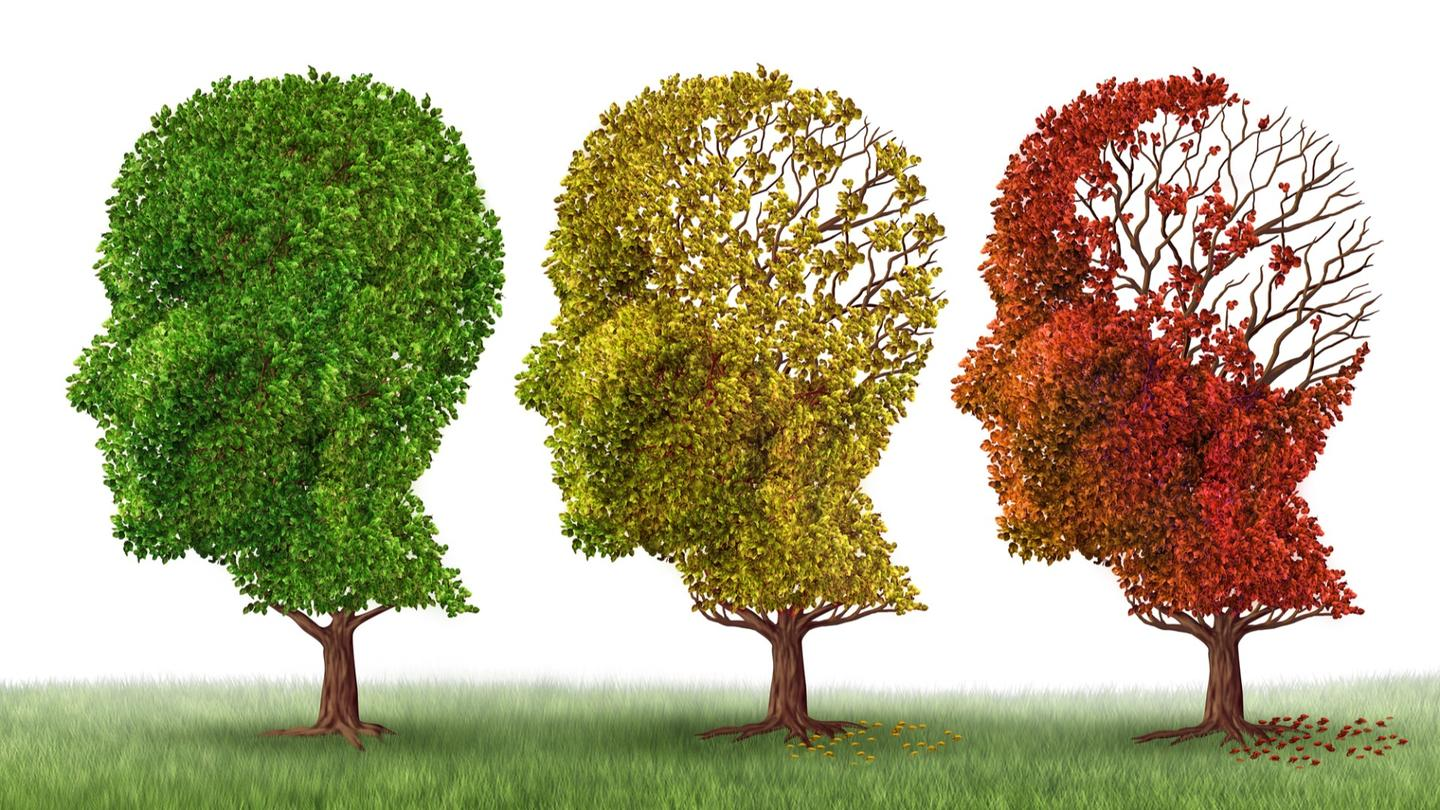 Researchers have developed a blood test for diagnosing Alzheimer's disease is at-risk patients years before degenerative symptoms appear