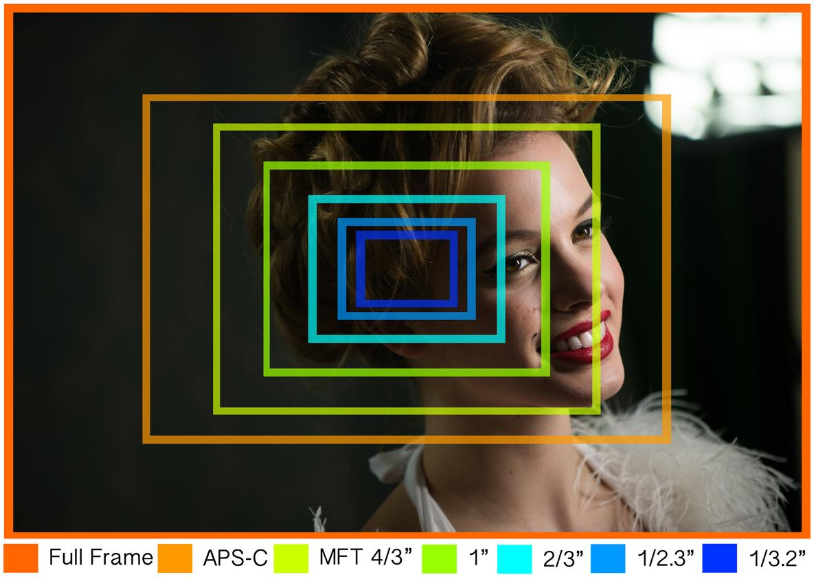 What different-sized sensors – Full Frame, APS-C, MFT, 1-inch, 2/3-inch, 1/2.3-inch, 1/3.2-inch – would have captured if using the same lens to take this photo