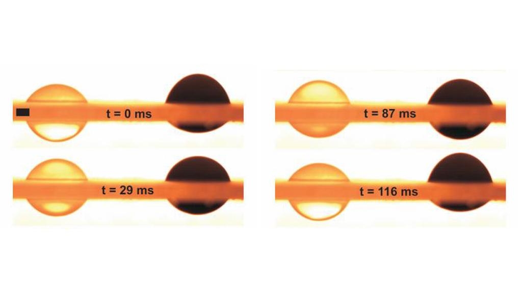 The liquid pistons are comprised of droplets of nanoparticle-infused ferrofluids (Image: Rensselaer/Hirsa)