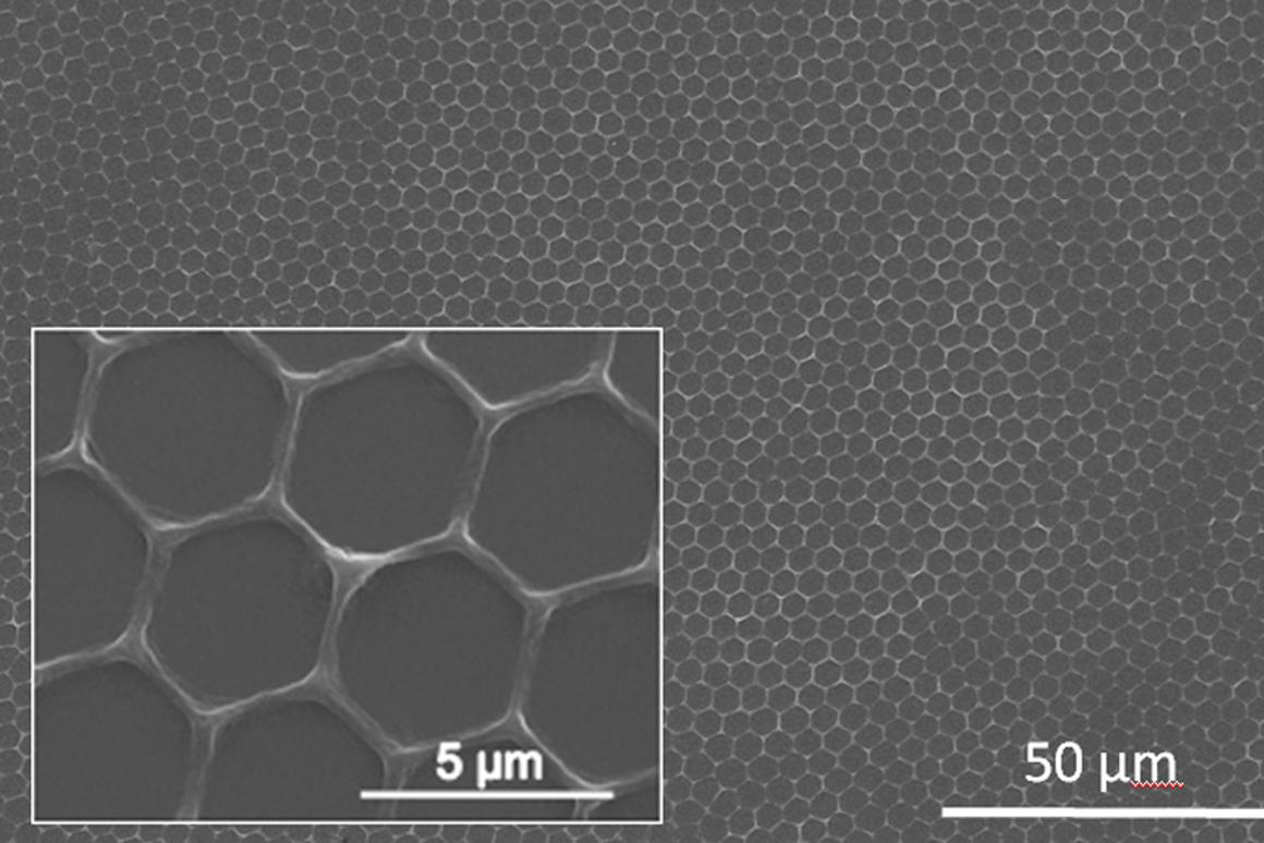 Scanning electron microscopy image and zoom of conjugated polymer (PPV) honeycomb