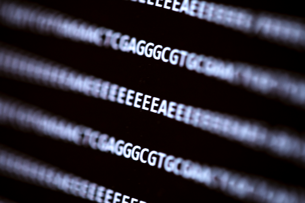 UW researchers have demonstrated for the first time that it is possible to remotely compromise a computer using information stored in DNA