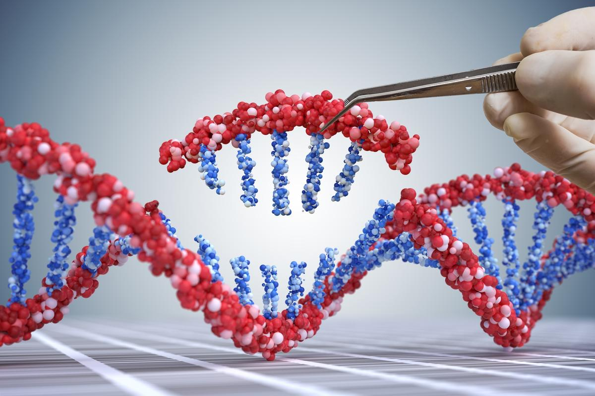 The first US clinical trial of CRISPR gene-editing in human immune cells has yielded positive safety results