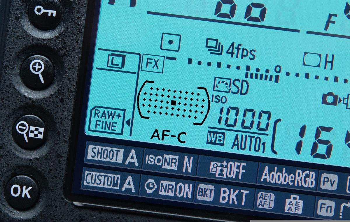 We look at manual, single and continuous focusing modes