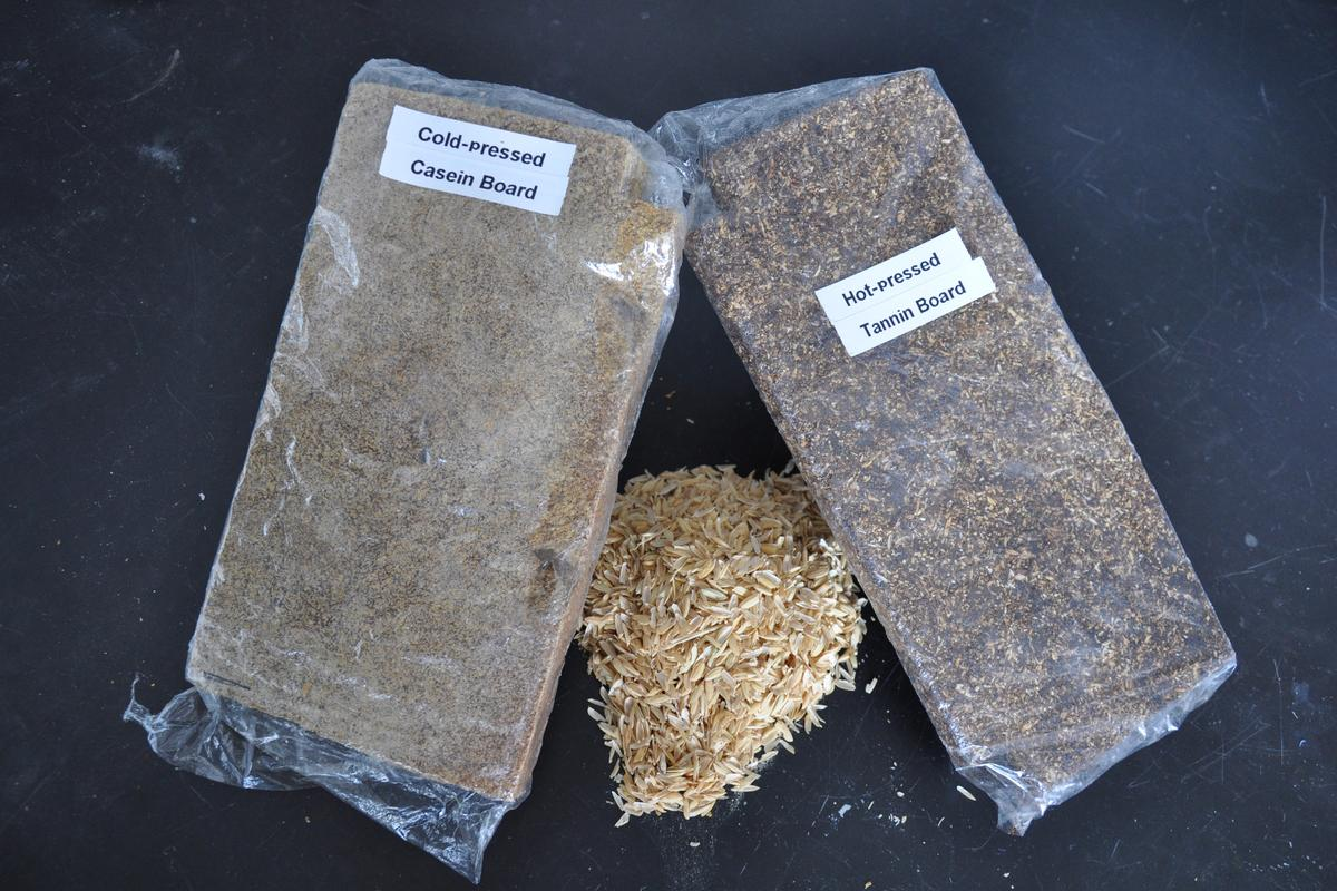Examples of different types of particleboard made from rice husks