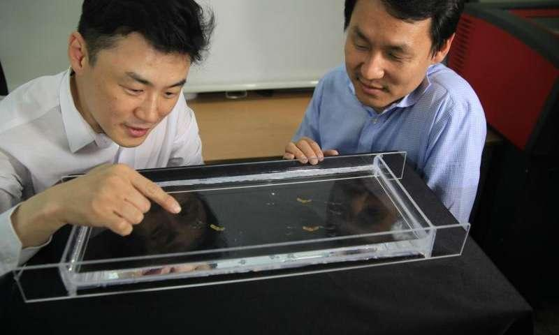 Scientists at Seoul National University test prototypes of their semi-aquatic jumping robot