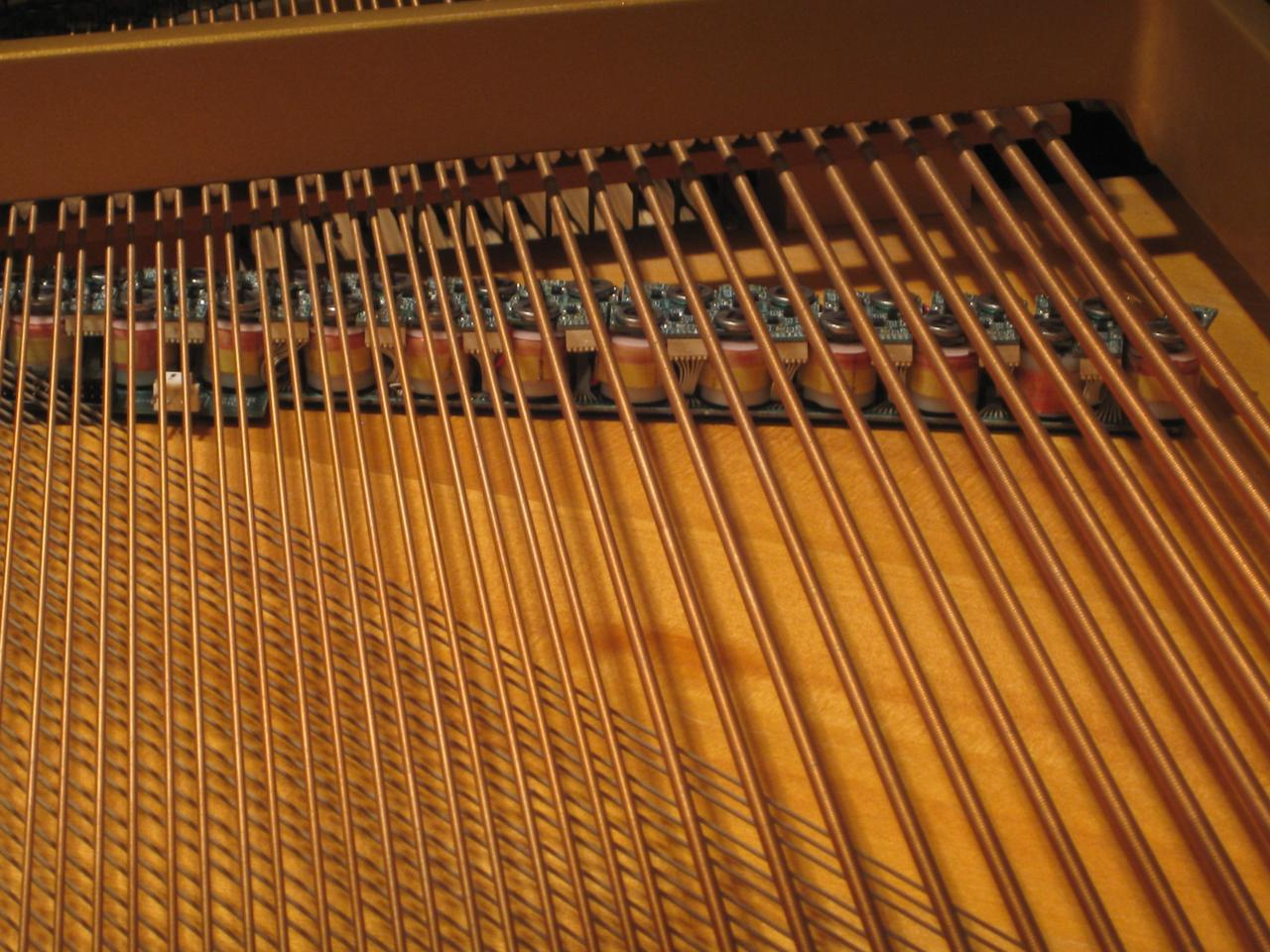 Each string of the piano has its own sustainer module