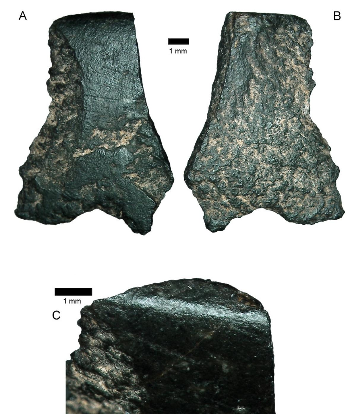 The world's oldest axe fragment, discovered in a remote region of Australia, is about the size of a thumbnail and dates back to 45,000-49,000 years ago