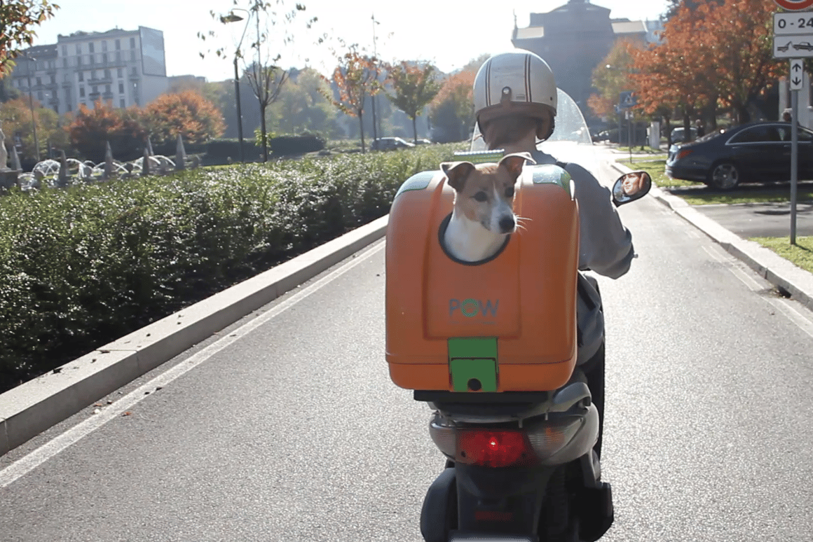 Pet On Wheels brings about a welcome level of versatility to the motorcycle pet carriers