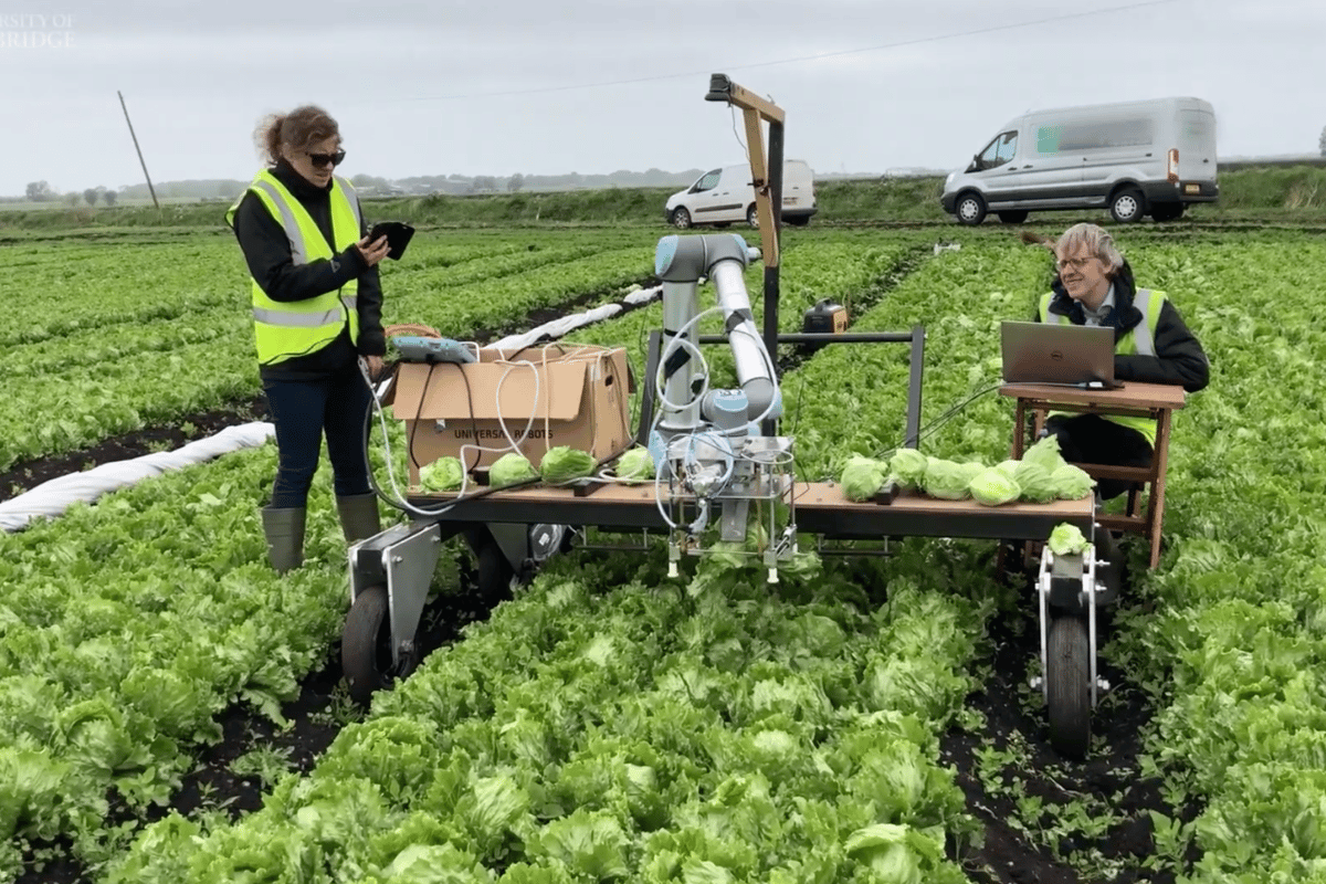 The robot is not near a commercial stage but instead has been developed to pioneer new computer vision and engineering processes for future agricultural outcomes