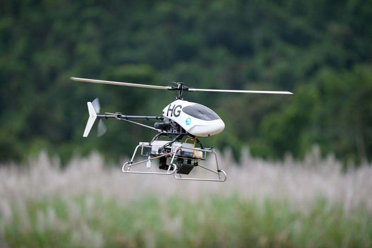 The Project ResQu mini helicopters offer a more effective way to hunt down invasive weeds in Queensland's tropical rainforests (Photo: CSIRO)