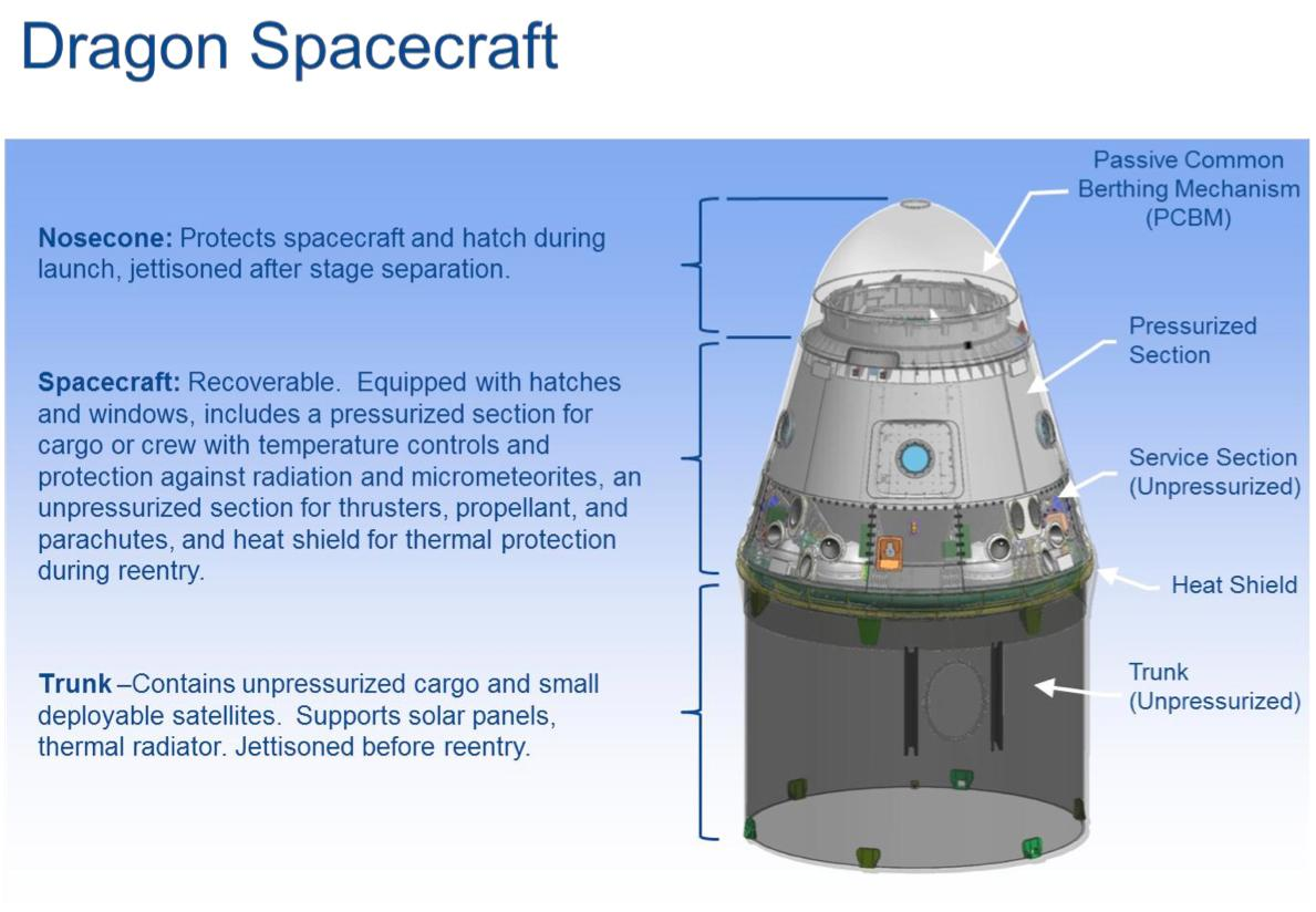 The Dragon space capsule (Image: SpaceX)
