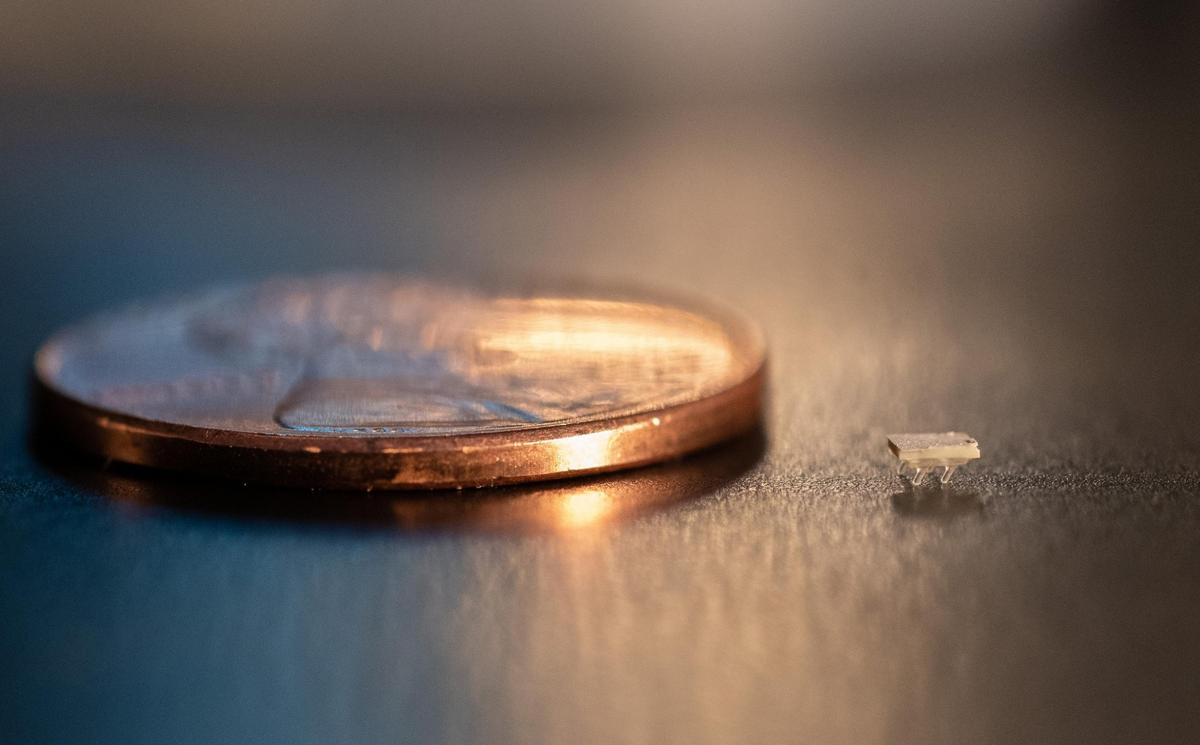 One of them seen here next to a US penny, the robots weigh about 5 milligrams each – jumping and swimming versions are in the works