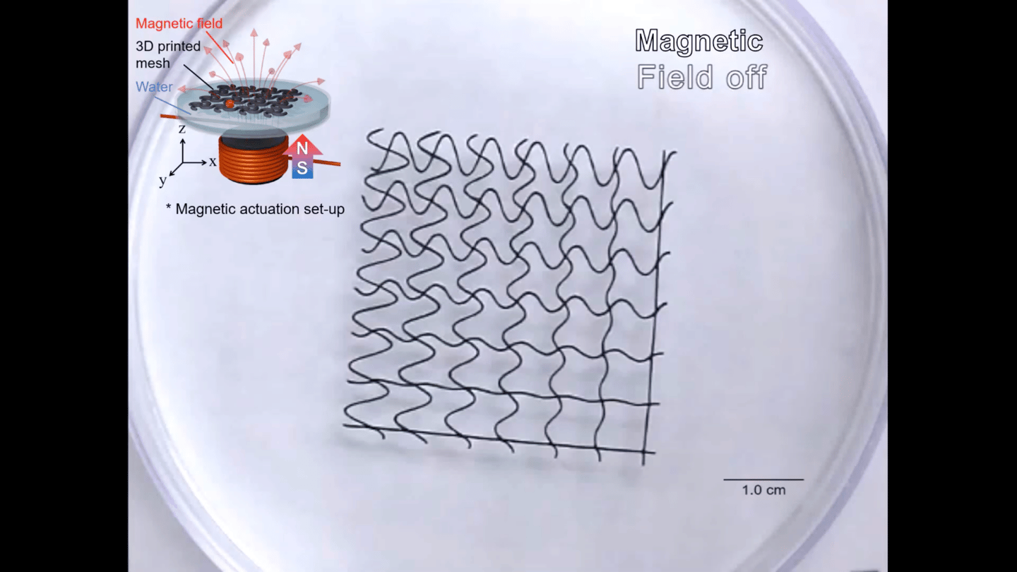 These mesh robots can bend and flex in response to a magnetic field