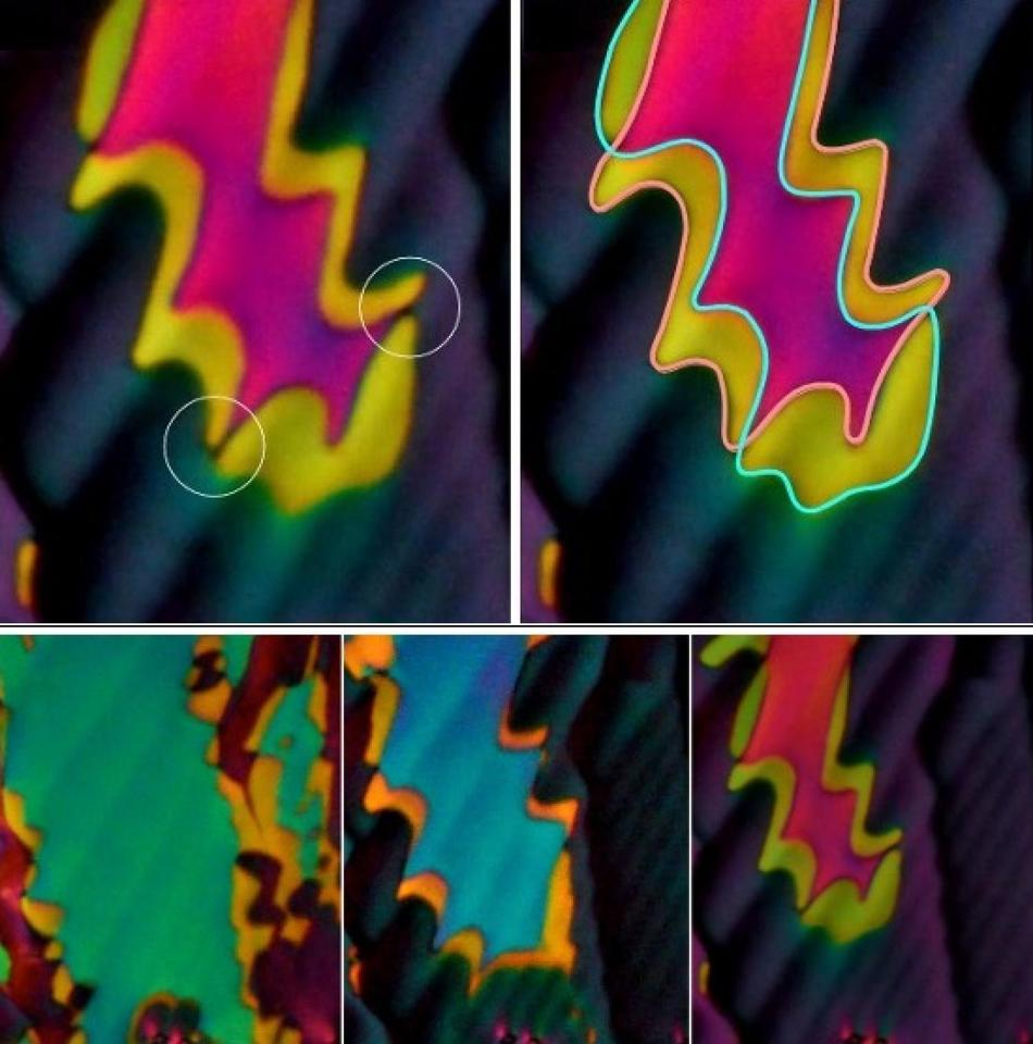 Striking colors seen in a newly discovered phase of liquid crystal under the microscope