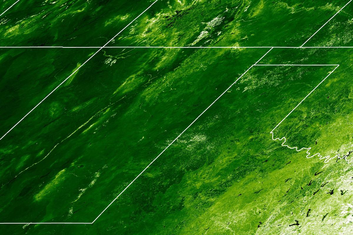 Satellite image using what is known as the Enhanced Vegetation Index (EVI) to show plant cover in June 2004 in the U.S (Image: Philip Dennison, University of Utah)