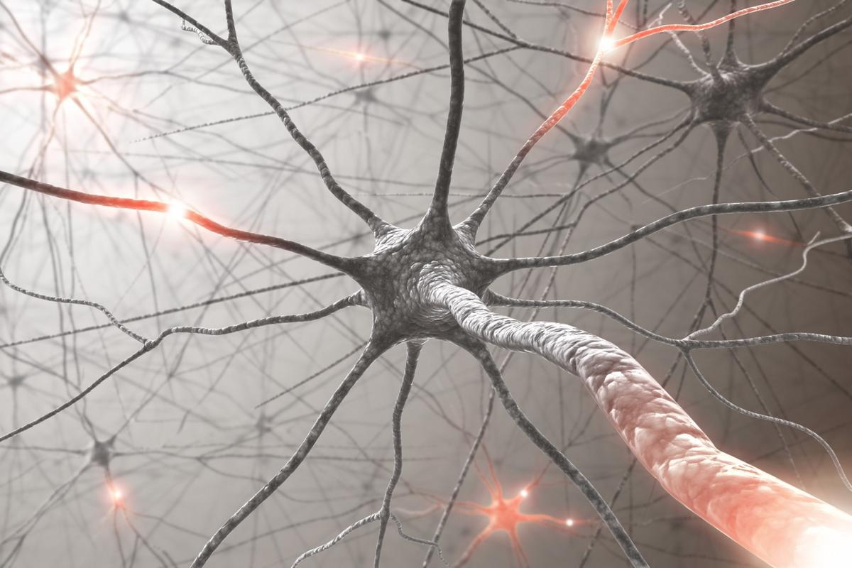 A new pathway in to preventing and treating Alzheimer's?