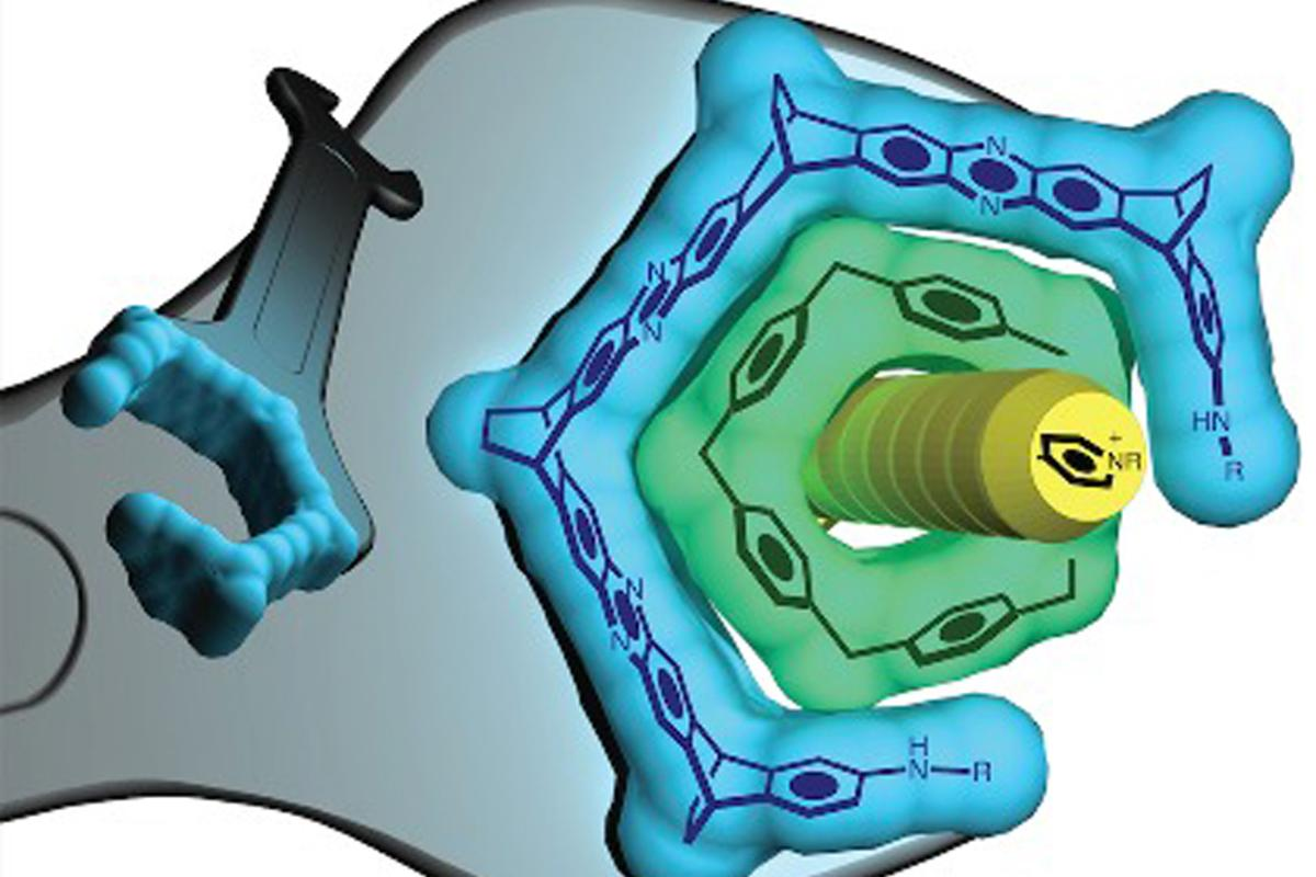 """A blue wrench (of molecules) to adjust a green bolt (a pillarene ring) that binds a yellow chemical """"guest."""""""